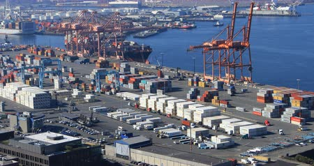 visão global : View of container shipping in Seattle, Washington port 4K Stock Footage