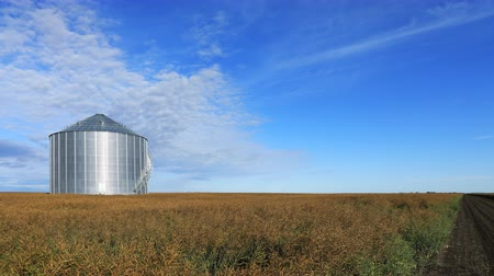 prairie : Timelapse of huge grain bin in Saskatchewan, Canada 4K Stock Footage