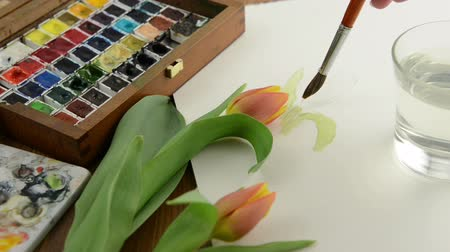 ilustração e pintura : Painting with paintbrush a tulip in watercolors