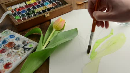 ručně malovaná : Painting with paintbrush orange tulip bud in watercolors. Time lapse