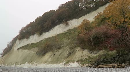 chalky : Sassnitz, Mecklenburg-Vorpommern  GERMANY October 19 2016: people walking along the chalk rock cliffs of Rugen island in autumn time. Beech forest on top of cliff. Stock Footage