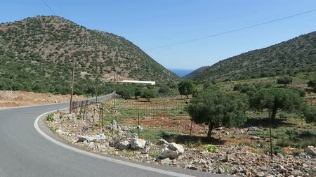 malia : Road to mountain village Krasi on Crete  Greece. Driving along a road with olive trees aside