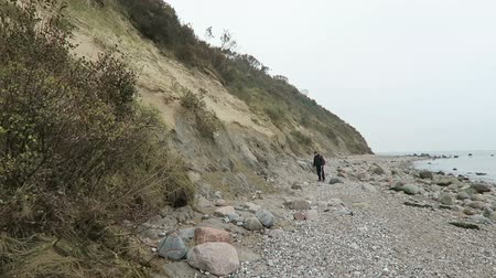 thornbush : Monastery, Mecklenburg-Western Pomerania  Germany 17 October 2016: People walking along the beach at Hiddensee island Cliff, searching fossils. Autumn time with colorful leaves.