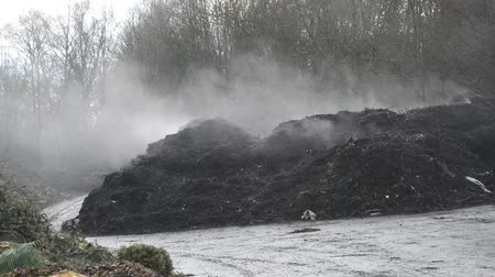 idil : fuming compost heaps Stok Video