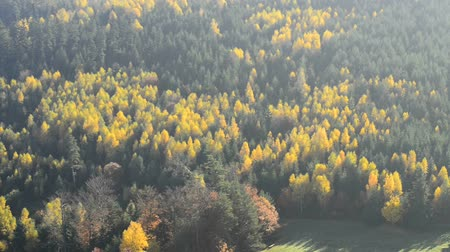 vosges : View of the Rock of Dabo in France to the Vosges in autumn
