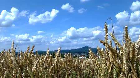 ventoso : Panoramic view toe the emperor Hohenstaufen hill in a time lapse