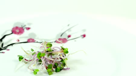 macrobiotic : Radish sprouts on a turntable