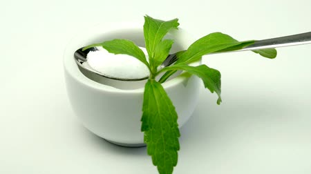sweetener : Stevia rebaudiana herb and powder on a turn table