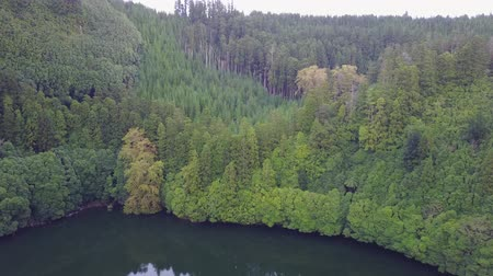 sao miguel : The astonishing Lagoon of the Seven Cities (Lagoa das 7 cidades) - Azores - Portugal Stock Footage