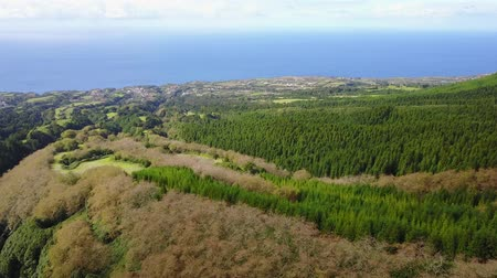 sao miguel : The astonishing greens of the archipelago of Azores - Portugal Stock Footage