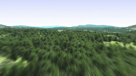 jungle : Flying above the forest Stock Footage