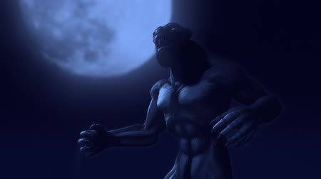 řev : Werewolf TransformationA man transforms into a werewolf in front of the full moon. Animation.