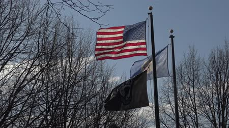 nacionalismo : USA, MINNESOTA, 24 Apr 2018: USA flag and Flag of american state of Minnesota waving in wind, Reast Area Vídeos