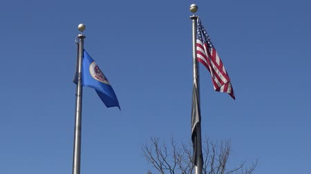 stars and stripes : USA, MINNESOTA, 24 Apr 2018: USA flag and Flag of american state of Minnesota waving in wind, Reast Area Stock Footage