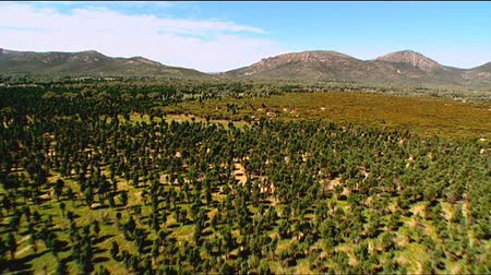 marys : Aerial footage of rugged out back Australian mountain ranges, creeks, peaks, desert and Mallee areas. Flinders Ranges Area, featuring Wilpena Pound, Arkaroola, St Marys Peak and outback creek beds, with dirt tracks Stock Footage