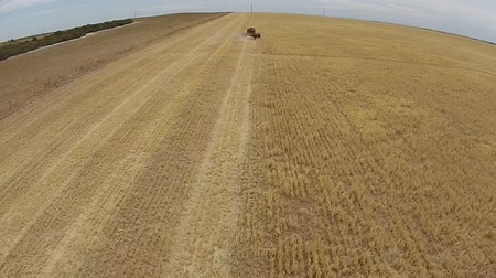 slashing : Distant Aerial footage of vintage harvester, harvesting hay paddock in rows, around huge paddock in drought stricken dry land farming area of Australia and filling grain silo read for stock piling Stock Footage