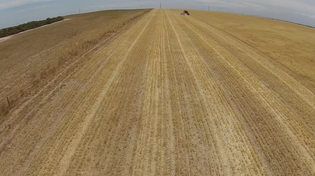 засуха : Aerial footage of distant harvesting hay paddock in rows, around huge paddock in drought stricken dry land farming area of Australia and filling grain silo read for stock piling Стоковые видеозаписи