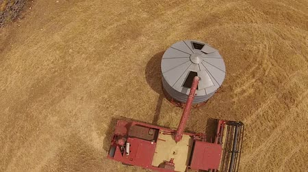 slashing : Overhead Aerial footage of harvester, filling silo and harvesting hay paddock in rows, around huge paddock in drought stricken dry land farming area of Australia and filling grain silo read for stock piling Stock Footage