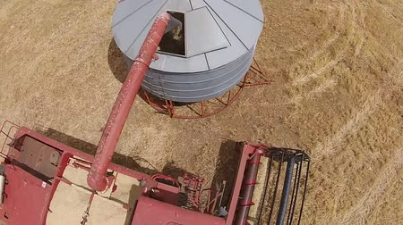 plodina : Aerial footage of grain silo, cropping harvester, harvesting hay paddock in rows, around huge paddock in drought stricken dry land rural farming area of Australia and filling grain silo read for stock piling