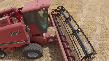 slashing : Close up aerial footage of harvester, harvesting hay paddock in rows, around huge paddock in drought stricken dry land rural farming area of Australia and filling grain silo read for stock piling Stock Footage