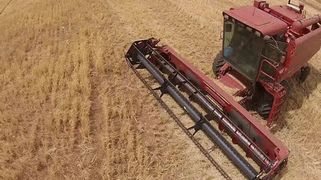 slashing : Aerial footage of combine harvester, harvesting hay paddock in rows, around huge paddock in drought stricken dry land rural farming area of rural Australia and filling grain silo read for stock piling