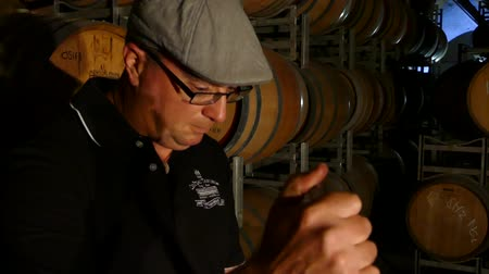 pince : Close up of wine maker testing and tasting red wine in winery cellar featuring rows of oak barrels after vintage and harvest. Include Barossa Valley, Clare valley, Hunter Valley, Tanunda, Yarra, Stock mozgókép