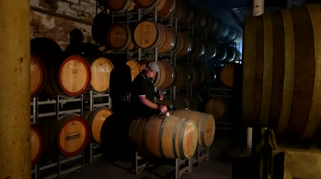készítő : Wine maker testing and tasting red wine in winery cellar featuring rows of oak barrels after vintage and harvest. Include Barossa Valley, Clare valley, Hunter Valley, Tanunda, Yarra,