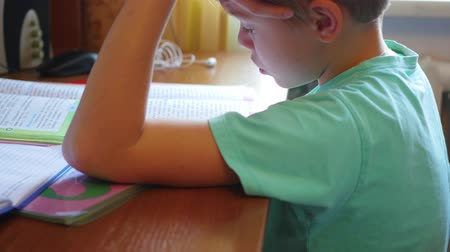 estudioso : child doing homework, reading a book at table