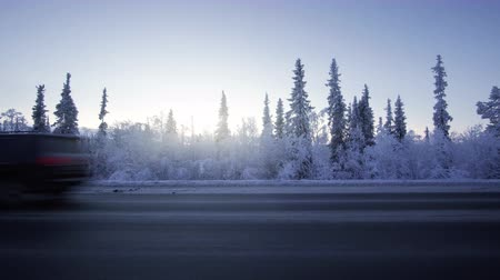 январь : Car lights in winter forest
