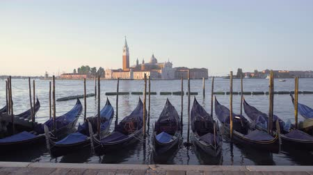 venetian lagoon : San Marco Square, Venice, Italy Stock Footage