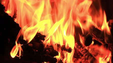 madeira : Building new fire in a fire place