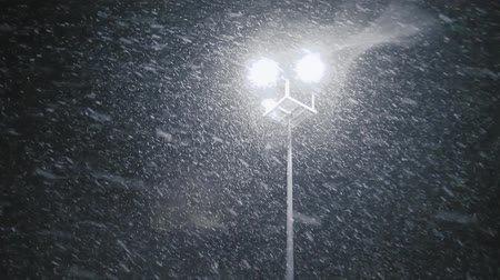 kar fırtınası : Snow falling in streetlight beams at night. Loop.  Stok Video