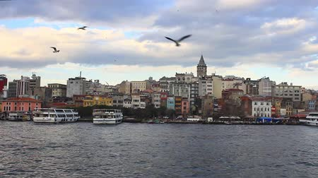 istanboel : Goldenhorn Pan Video