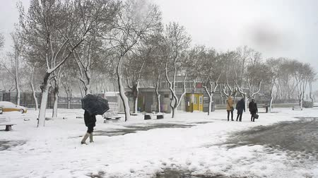 turistik : Snowy winter morning, Kadiky Pier. Kadikoy, Istanbuls liveliest neighbourhood after Beyoglu. It is less touristy than parts of the European side of the city and located on Anatolian side. Stok Video