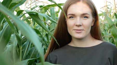 Portrait of a beautiful smiling girl with blue eyes in a corn field. Sweet young woman in khaki sweatshirt at sunset. Agricultural Footage.