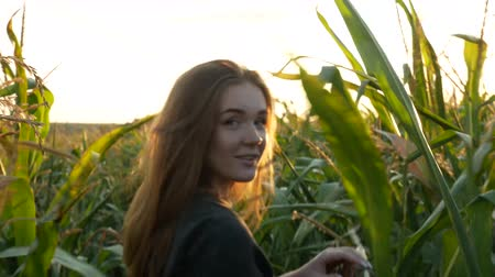 Flirty red-haired girl smiles and goes away through a corn field. Beautiful young woman with blue eyes in khaki sweat shirt at sunset. Agricultural Footage.
