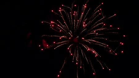 Colourful fireworks. Firework show in the night sky. Fireworks show. Pyrotechnics Dostupné videozáznamy