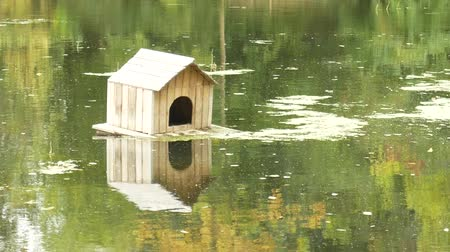 Scenic view of a beautiful swan house with reflection on a small lake. Wooden duck house floating on a pond in early autumn