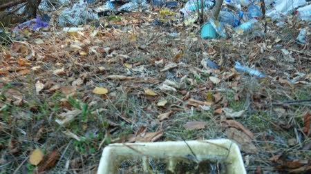 Reflection of blue sky in box of water changes to garbage lies on the ground in autumn forest. Trash is dumped in open and freely available places. Environmental pollution ecological problem concept
