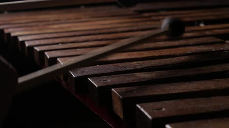 симфония : Close up of male musician hands play xylophone or marimba. In the end insert mallets into instrument between keys Стоковые видеозаписи
