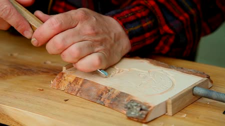 wood : Wood carving artist at work Stock Footage