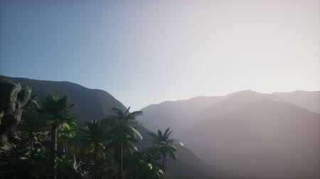 molas : 4k Mountain, field landscape with Palm trees. Jungle. Aerial view