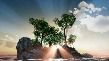 god ray : 4k Sun beams through Trees at rock Stock Footage