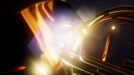 trumpet : french horn with DOF and lense flairs