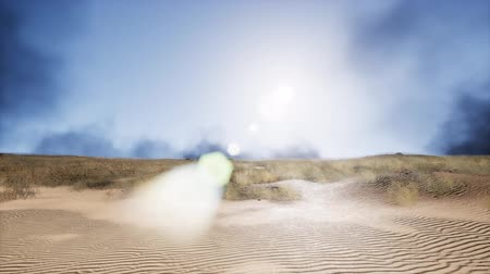 silvicultura : smoke over sand dunes Stock Footage
