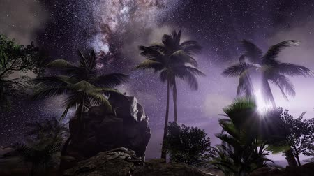starry sky : 4K Astro of Milky Way Galaxy over Tropical Rainforest.