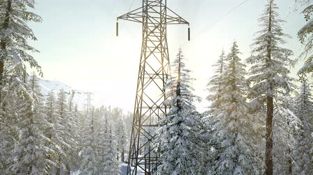 geada : electric line at sunrise in snow covered forest