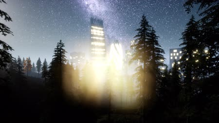 new town : city skyscrapes at night with Milky Way stars