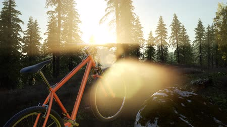 bisikleti : bicycle in mountain forest at sunset