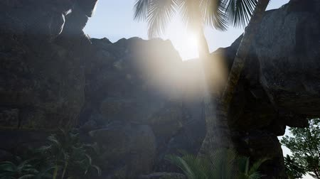 geologia : Sunbeam in cave with palms